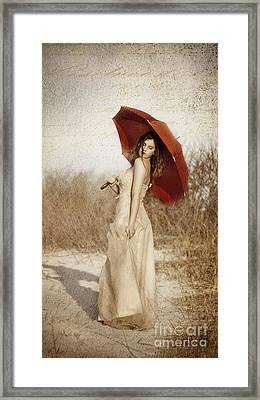 Painted Lady Narrow Framed Print