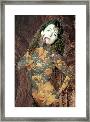 Painted Lady Framed Print by Richard Henne