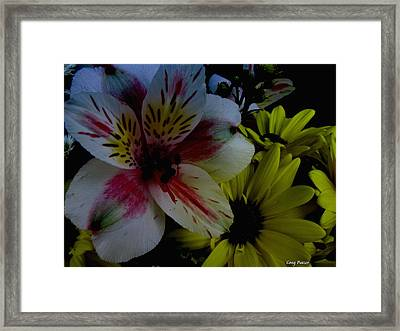 Painted Lily Framed Print by Greg Patzer