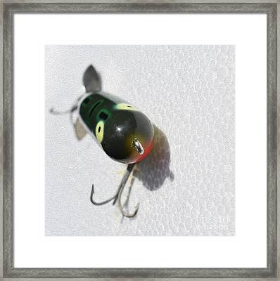 Painted Lil Buzz Bait Framed Print