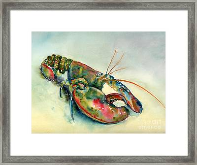 Painted Lobster Framed Print