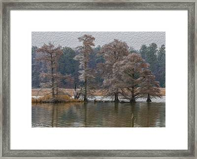 Painted Morning Framed Print by Barbara Houston