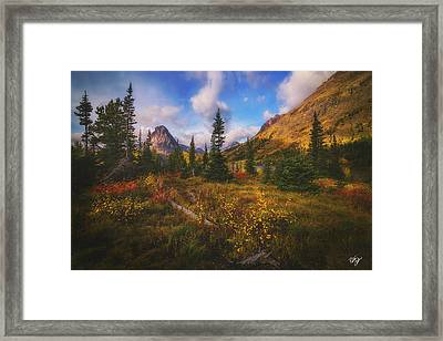 Painted Morning Framed Print by Peter Coskun