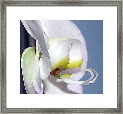 Framed Print featuring the digital art Painted Orchid by Ellen Barron O'Reilly