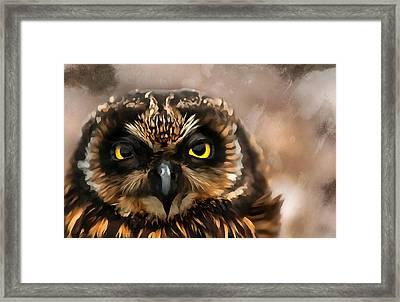 Painted Owl Framed Print