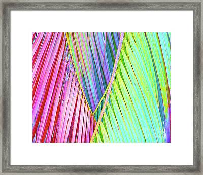 Painted Palms Framed Print by Chris Andruskiewicz