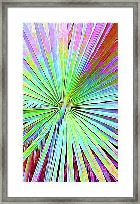Painted Palms II Framed Print by Chris Andruskiewicz