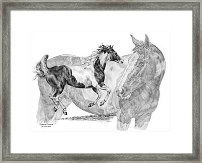 Painted Passion - Paint Horse Art Print Framed Print by Kelli Swan