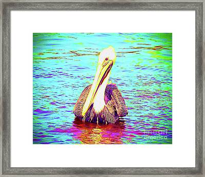Painted Pelican Framed Print by Chris Andruskiewicz
