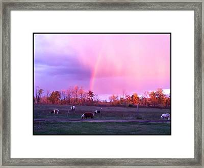 Painted Ponys  Framed Print