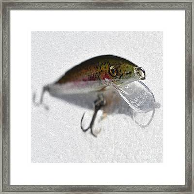 Painted Rainbow Trout Lure Framed Print