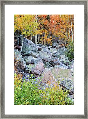 Painted Rocks Framed Print