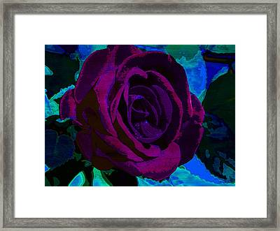 Painted Rose Framed Print by Samantha Thome