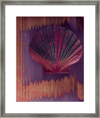 Painted Shell  1 Framed Print by Anne-Elizabeth Whiteway
