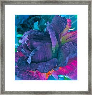 Painted Silk Framed Print by Gwyn Newcombe