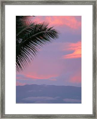 Framed Print featuring the photograph Painted Sky by Debbie Karnes