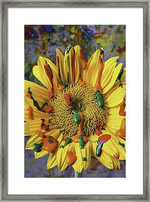 Painted Sunflower Framed Print by Garry Gay