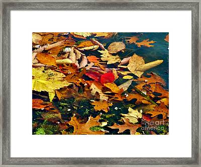 Painted Water          Autumn            Indiana Framed Print