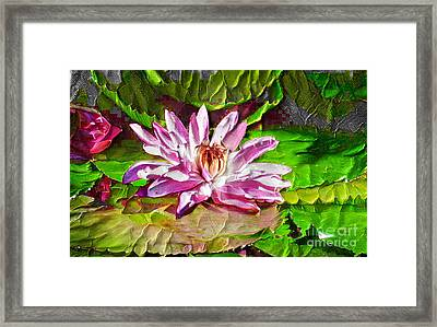 Painted Waterlilies Framed Print