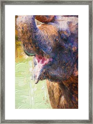 Painterly Elephant Framed Print by Pati Photography