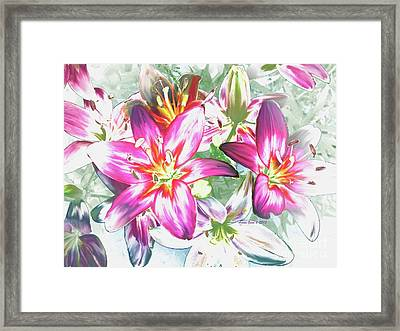 Painterly Pink Tiger Lilies Framed Print