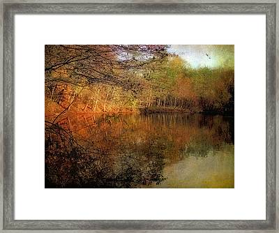 Painterly Pond Framed Print by Jessica Jenney