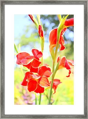 Painter's Delight Framed Print