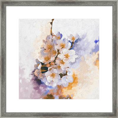 Painting 377 3 Cherry Blossoms Framed Print by Mawra Tahreem