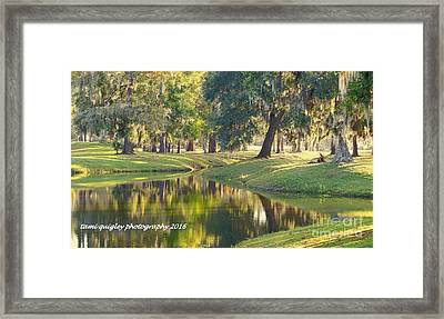 Painting Dixie Framed Print
