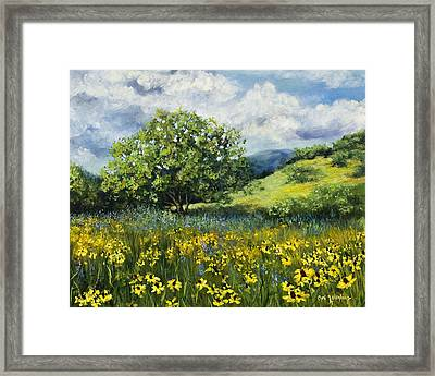 Painting Of Black-eyed Susans In Oklahoma Landscape Framed Print