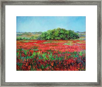 Painting Of Indian Paintbrush In Oklahoma Framed Print by Cheri Wollenberg