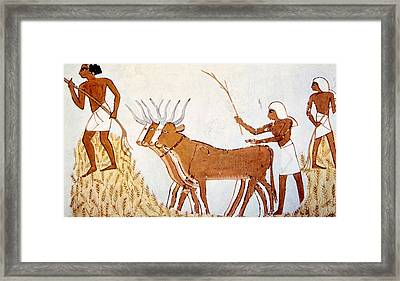 Painting Of Workers Trading Wheat Framed Print by Everett