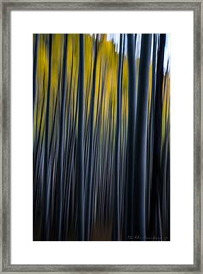 Painting The Aspens Framed Print by Bill Cantey