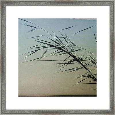 #painting #wallpainting #wallpaint Framed Print