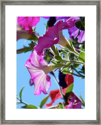 Painting With Light Framed Print by Wild Thing