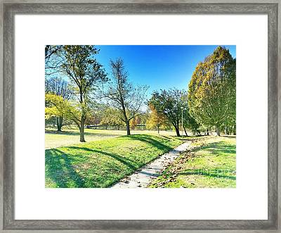 Painting With Shadows - Park Day Framed Print