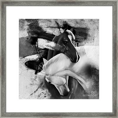 Pair Of Horse  Framed Print by Gull G