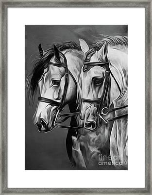 Pair Of Horses Framed Print by Gull G