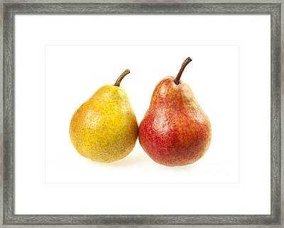 Pair Of Pears Framed Print by Elena Elisseeva