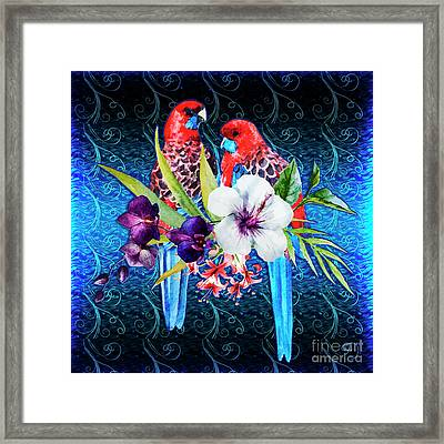Paired Parrots Framed Print