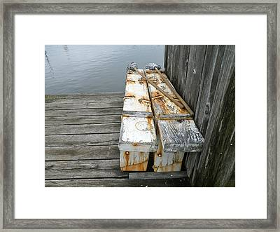 Framed Print featuring the photograph Paired Up by Anna Ruzsan