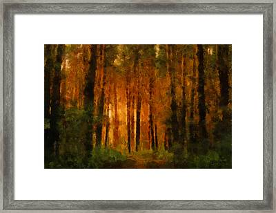 Palava Valo Framed Print by Greg Collins