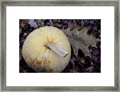Pale Harvest Moon Framed Print by JAMART Photography