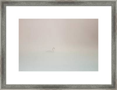 Framed Print featuring the photograph Pale Outline In The Fog by Davor Zerjav