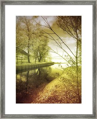 Pale Reflections Of Life Framed Print