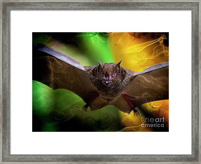Pale Spear-nosed Bat In The Amazon Jungle Framed Print by Al Bourassa
