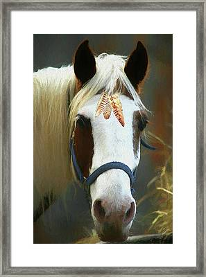 Paleface Horse - Painting Framed Print by Ericamaxine Price