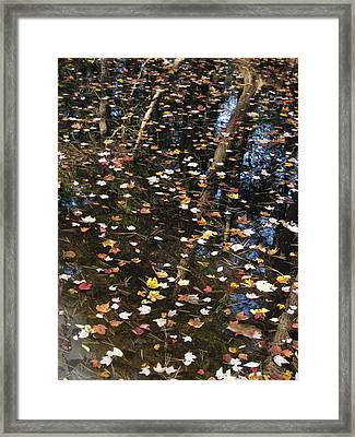 Palette Framed Print by Andy  Torraco