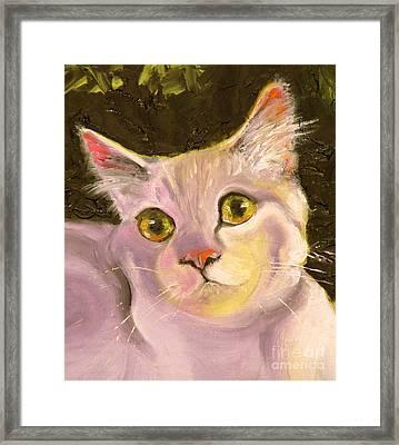 Palette Pal Close Up Framed Print by Susan A Becker