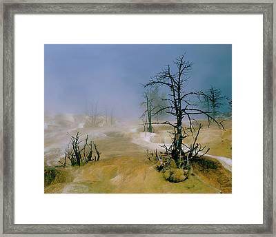 Palette Spring Framed Print